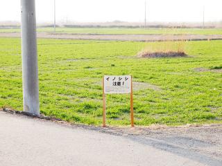 荒川サイクリング (13)