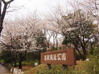岩槻城址公園 (6)