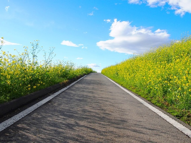 荒川自転車道 (11)