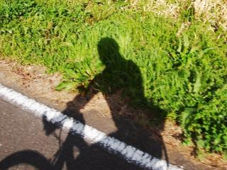 荒川自転車道 (20)