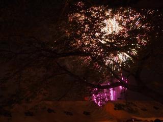 さきたま火祭り2013 (29)