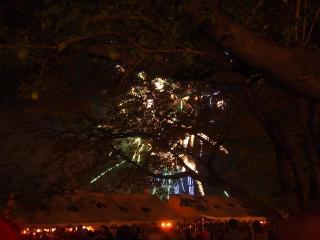 さきたま火祭り2013 (30)
