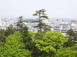 鶴ヶ城 (8)