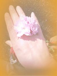 2013さくら指輪