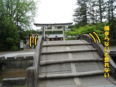 多賀大社 太鼓橋