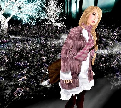 Snapshot_009_20121121203620.jpg