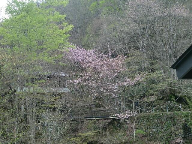 宝川温泉風景