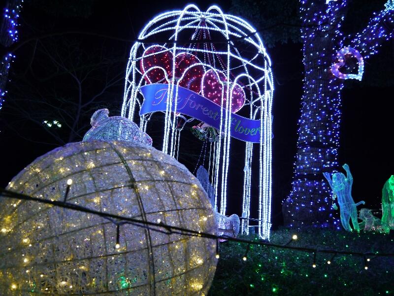 2012上野公園イルミネーション2