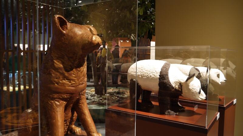 チョコレート展 秋田犬とパンダ
