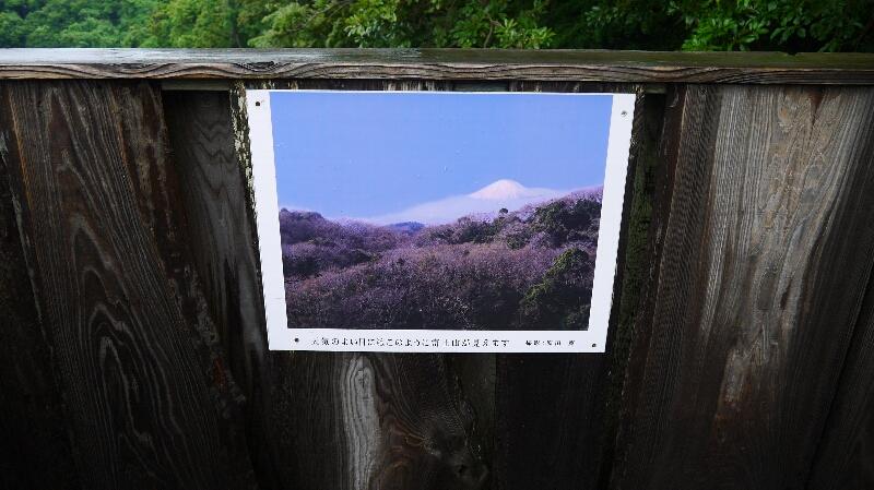 富士見台現実