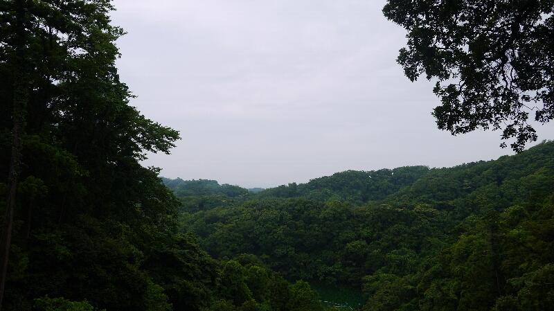 富士見台からの風景
