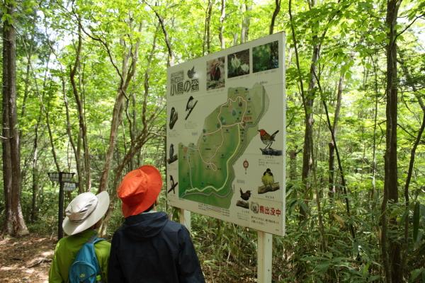 0602 茶臼山20
