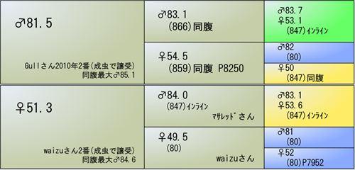 2013YG03