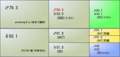 2013YG07