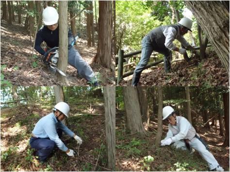 小里川ダム・森林整備