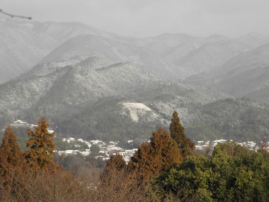 2013 0209 雪