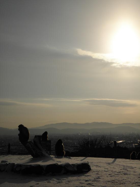 2013 0301 雪の朝