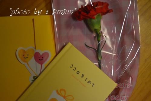 012_20130520183717.jpg
