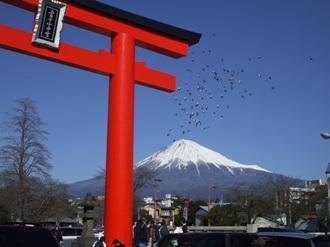 fujinomiya.jpg