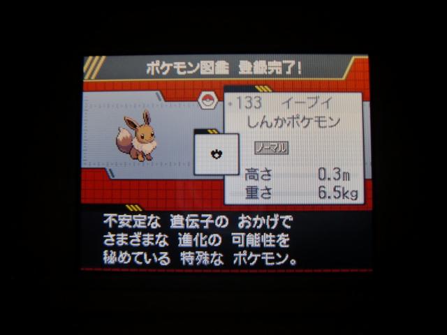 CIMG0780.jpg