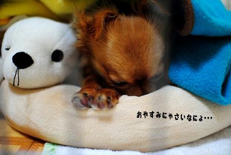 おやすみにゃさい
