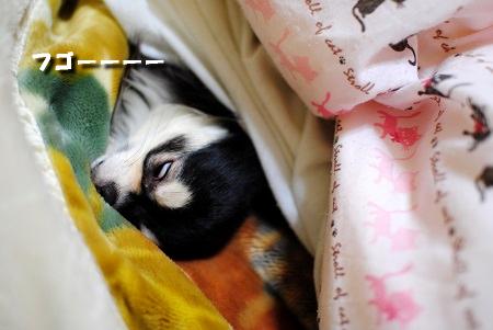 熟睡ちゅー‥