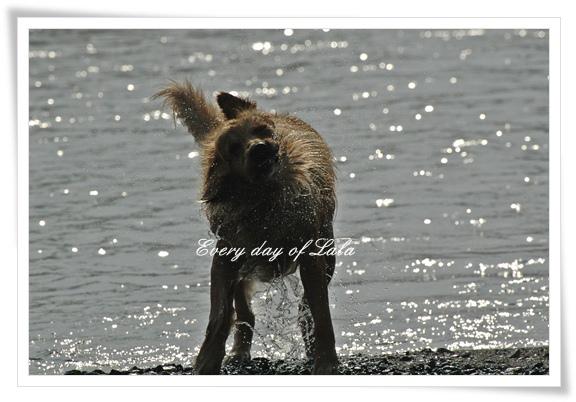 キャンプで川遊び201205
