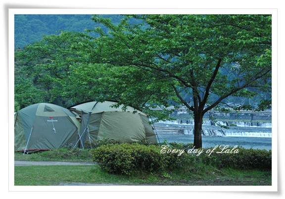 キャンプに来た201205