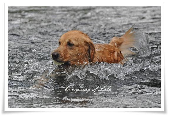 冷たいけど川遊び201206
