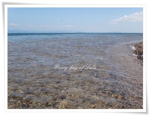 琵琶湖20120808
