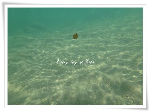 水中201208