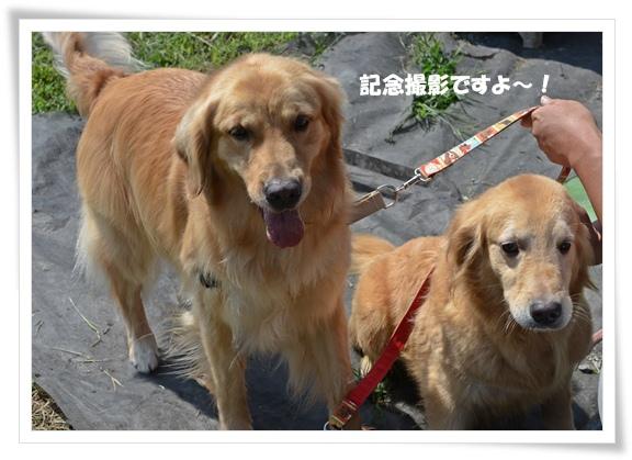 ママと記念撮影201209