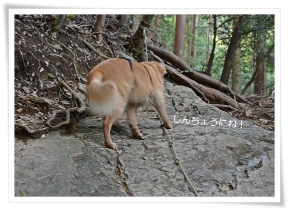 天王山の岩201211