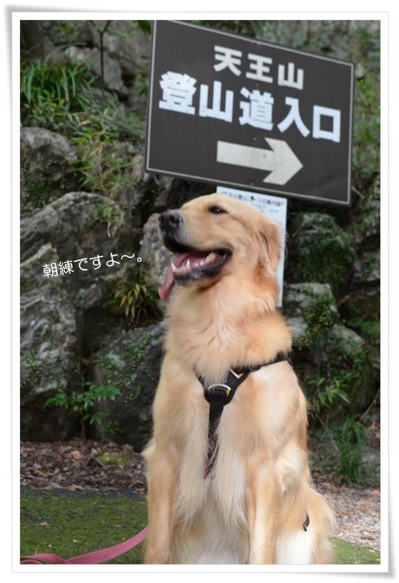 天王山登山へ201211
