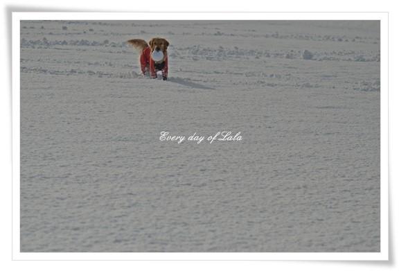 雪景色201212