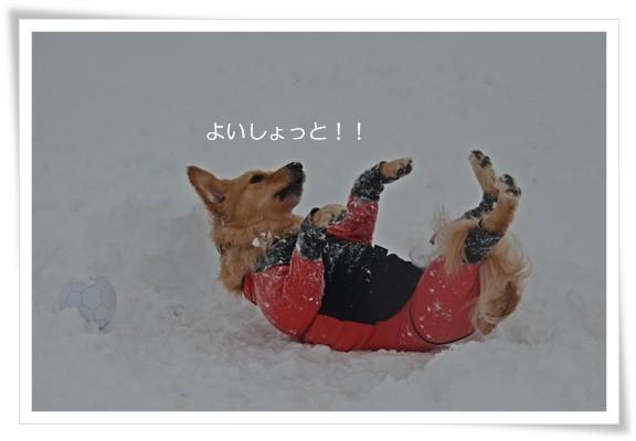 雪でよいしょと201212
