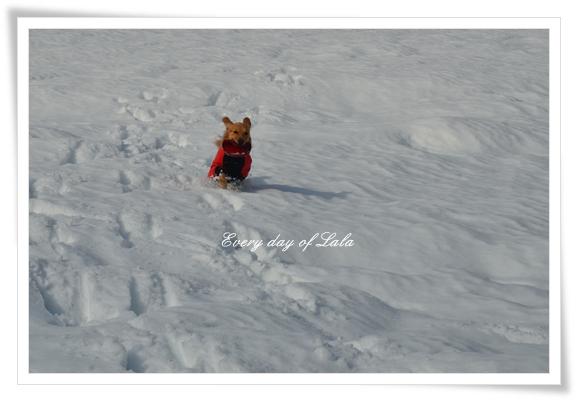 雪国へ201212