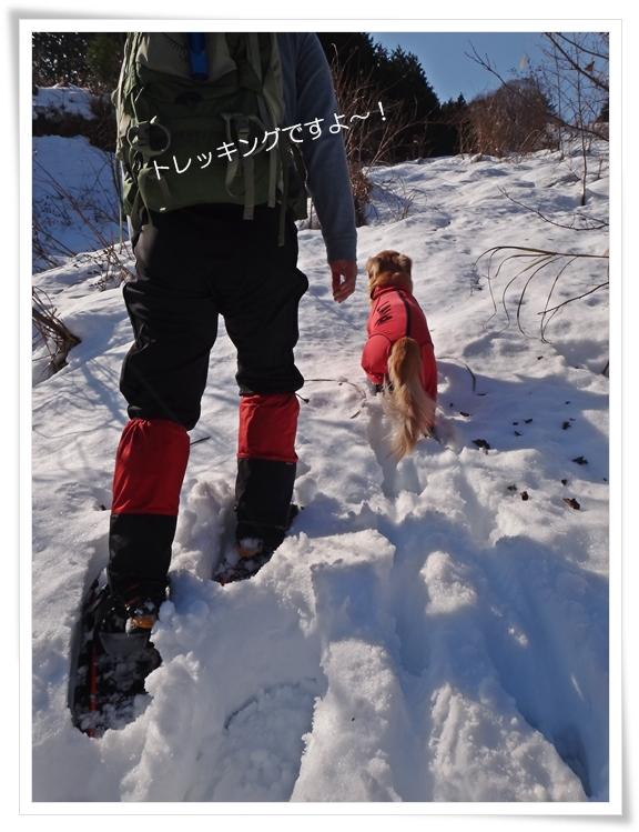 雪国のトレッキング201212