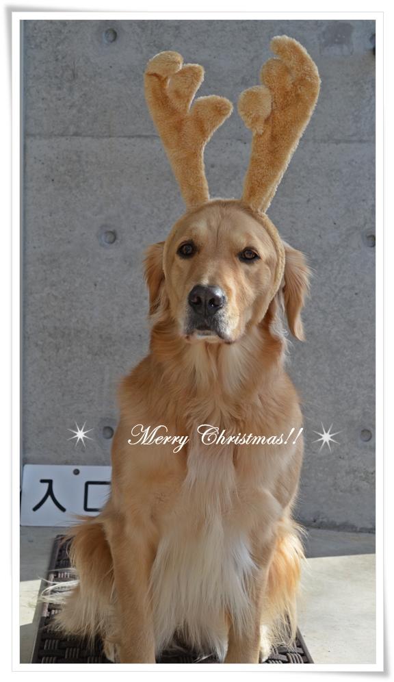 クリスマス201212