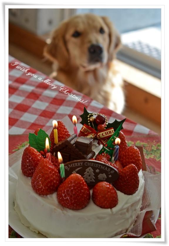 人用ケーキ201212