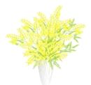 image haru mimoza