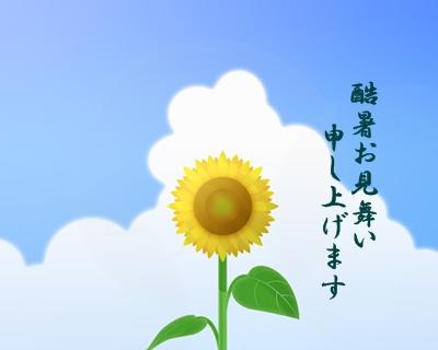 a image hagaki himawari