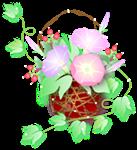 a image asagao100724-