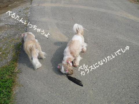 2_20120608105323.jpg
