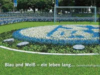 Schalke_20120725220506.jpg
