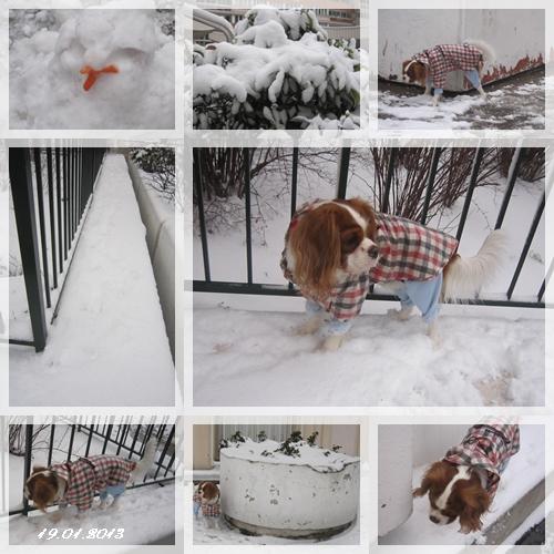 雪の中のお散歩