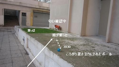 ボールの行方