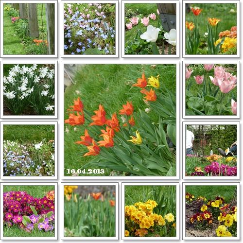 ベルシー公園の花