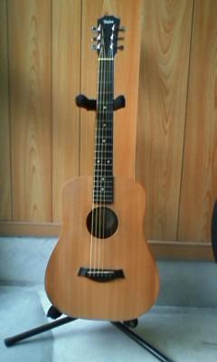 K-310 Taylor s05 MA