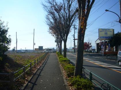 松枝橋19